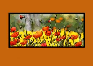 poppy-rust