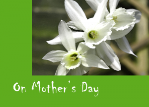 white-daffs-mothers-day