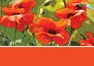 2014-poppy-orange