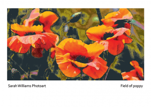 Field-of-poppy-poster