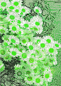 daisies-soft-green-front