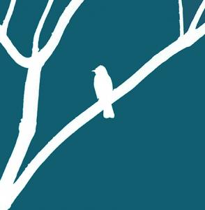 6x6-africa-bird-blue-front
