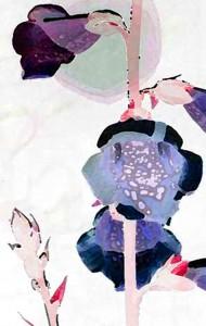 4x6 foxglove lilac blue front
