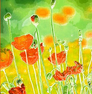 Photoart card - summer poppies